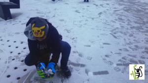 Vienna Snowfall - 2019